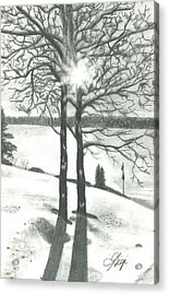 Acrylic Print featuring the drawing Hope Of Spring by Gigi Dequanne