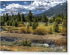 Hope Valley Wildlife Area Acrylic Print
