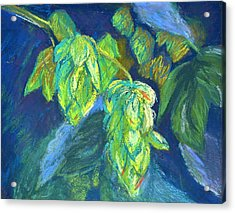 Hoppiness And Harmony Acrylic Print