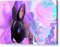 Hoppy Easter Acrylic Print by Mike Breau