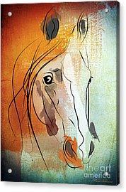 Horse 3 Acrylic Print by Mark Ashkenazi