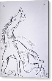 Horse ...after Picasso Acrylic Print by Paul Sutcliffe