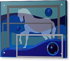 Horse And Blue Balls Acrylic Print