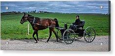 Horse And Buggy On The Farm Acrylic Print