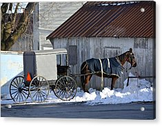 Horse And Buggy Parked Acrylic Print