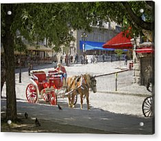 Horse And Carriage Street Scene Montreal Acrylic Print by Ann Powell