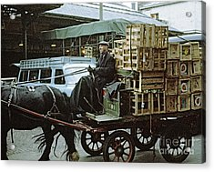 Horse And Cart London 1973 Acrylic Print by David Davies
