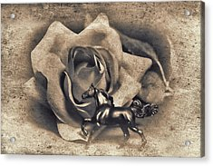 Horse And Rose Acrylic Print