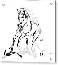 Horse- Andalusian Angel Acrylic Print