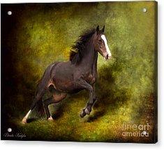 Horse Angel Acrylic Print