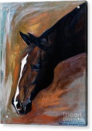 Acrylic Print featuring the painting horse - Apple copper by Go Van Kampen