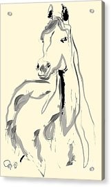 Acrylic Print featuring the painting Horse - Arab by Go Van Kampen