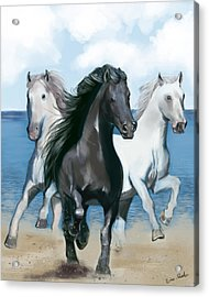 Horse Beach Acrylic Print by Eric Smith