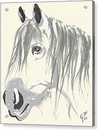 Horse- Big Jack Acrylic Print