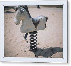 Horse Acrylic Print by Brady D Hebert