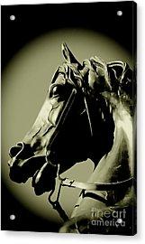 Horse Bronze Acrylic Print