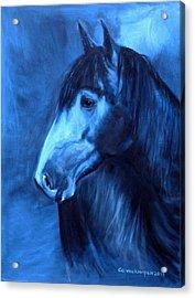 Horse - Carol In Indigo Acrylic Print