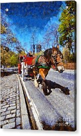 Horse Carriage In Central Park Acrylic Print by George Atsametakis