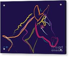 Horse - Colour Filly Acrylic Print