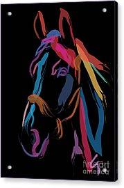 Horse-colour Me Beautiful Acrylic Print