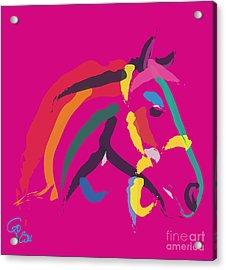 Horse - Colour Me Strong Acrylic Print