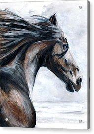 Horse Acrylic Print by Denise Deiloh
