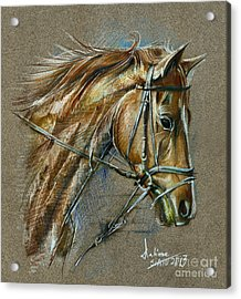 My Horse Face Drawing Acrylic Print