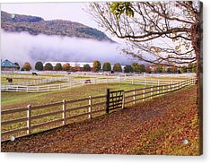 Horse Farm Autumn Acrylic Print by Tom Singleton