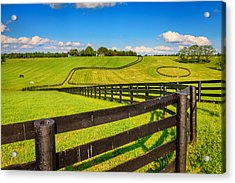 Horse Farm Fences Acrylic Print by Alexey Stiop