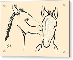 Horse-foals-together 6 Acrylic Print