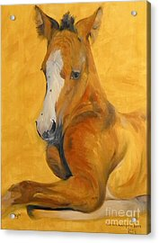 Acrylic Print featuring the painting horse - Gogh by Go Van Kampen