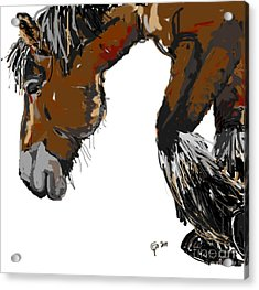 Acrylic Print featuring the painting horse - Guus by Go Van Kampen