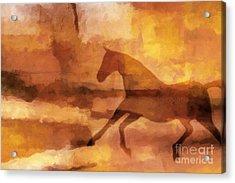 Horse Image Acrylic Print by Lutz Baar