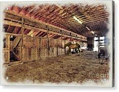 Horse In Barn Acrylic Print by Dan Friend