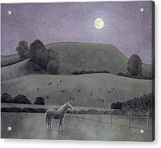 Horse In Moonlight, 2005 Oil On Canvas Acrylic Print by Ann Brain