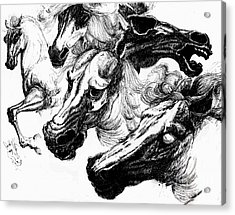 Horse Ink Drawing  Acrylic Print