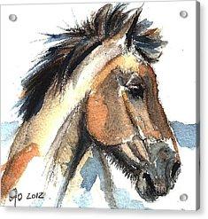 Horse-jeremy Acrylic Print