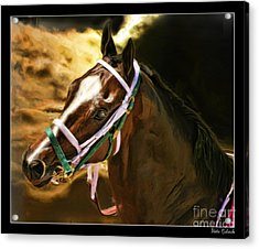 Horse Last Memories Acrylic Print by Blake Richards