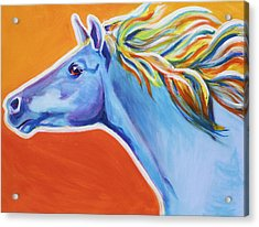 Horse - Like The Wind Acrylic Print by Alicia VanNoy Call