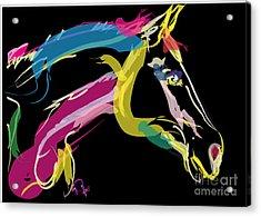Horse- Lovely Colours Acrylic Print