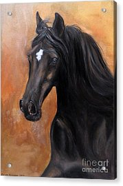 Acrylic Print featuring the painting Horse - Lucky Star by Go Van Kampen