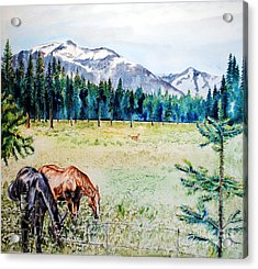 Horse Meadow Acrylic Print by Tracy Rose Moyers