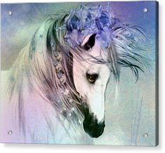 Horse Of Love Acrylic Print by Georgiana Romanovna