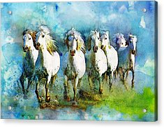 Horse Paintings 005 Acrylic Print by Catf