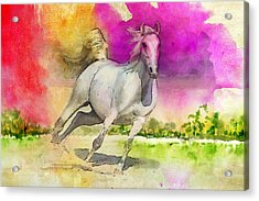 Horse Paintings 007 Acrylic Print by Catf