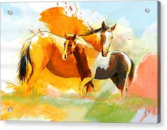 Horse Paintings 013 Acrylic Print by Catf