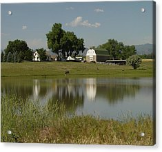 Horse Ranch Acrylic Print by Stephen Schaps