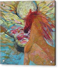 New Day Rising Acrylic Print by GALA Koleva