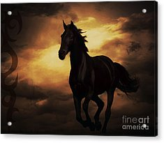Horse With Tribal Tattoo  Acrylic Print by Mindy Bench