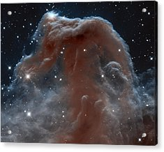 Horsehead Nebula Acrylic Print by Nasa